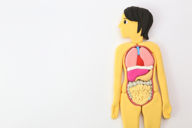 一般内科から肝臓内科まで
